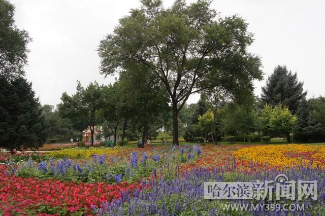 据了解,太阳岛风景区花卉园占地7.