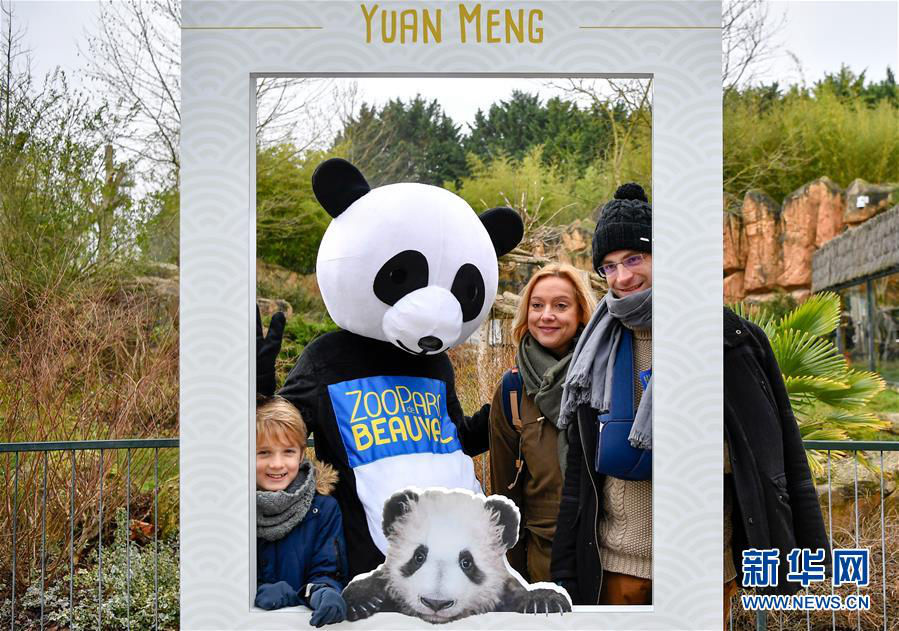 1月13日,在法国圣艾尼昂市博瓦勒野生动物园,游客与装扮成熊猫的工作人员合影。新华社记者 陈益宸 摄