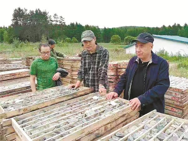 咱家也有矿!黑龙江发现超大型石墨矿价值超千亿
