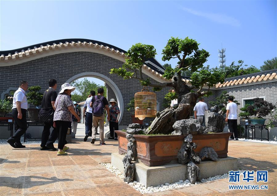 """(北京世园会)(1)北京世园会迎来""""广东日"""""""