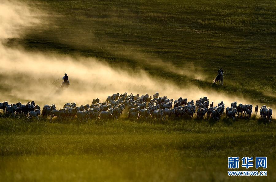 (壮丽70年·奋斗新时代——共和国发展成就巡礼·图文互动)(1)打造亮丽风景线 绘就最大同心圆——新中国70年内蒙古跨越式发展纪略