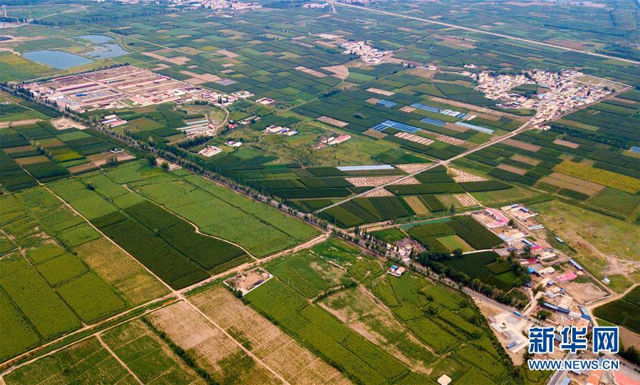 (壮丽70年·奋斗新时代——共和国发展成就巡礼·图文互动)(6)打造亮丽风景线 绘就最大同心圆——新中国70年内蒙古跨越式发展纪略