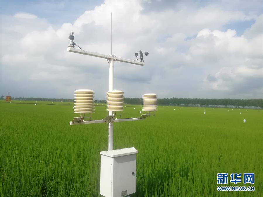 """(在习近平新时代中国特色社会主义思想指引下——新时代新作为新篇章·图文互动)(1)从""""靠天吃饭""""到""""看天管理""""——黑龙江创新气象为农服务体系观察"""