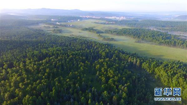 (新华全媒头条·图文互动)(10)为了美丽的绿水青山——习近平总书记考察生态文明建设回访