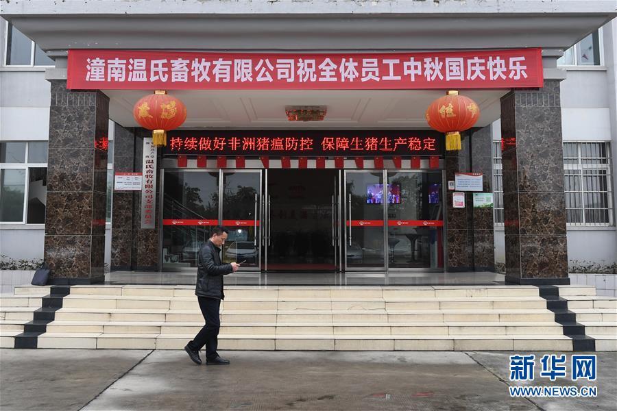 """(在习近平新时代中国特色社会主义思想指引下——新时代新作为新篇章·总书记关切高质量发展·图文互动)(1)稳住""""一头猪""""、供好""""一袋米""""、配好""""一篮菜"""