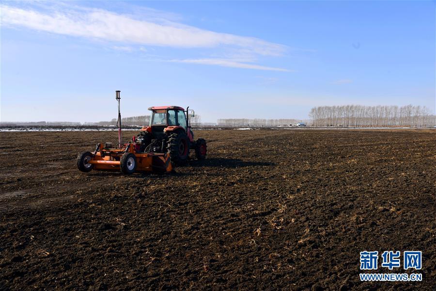 (在习近平新时代中国特色社会主义思想指引下——新时代新作为新篇章·习近平总书记关切事·图文互动)(4)希望的田野,希望的春天——各地农业生产新动态扫描