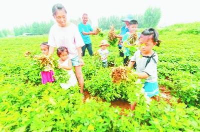 乡村旅游:除了田园农庄,不妨再多点文化风情